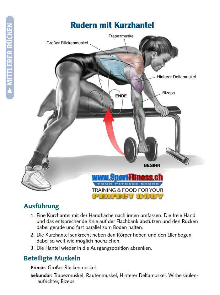 Gemeinsame SportFitness 5 beste Muskelaufbauende Rückenübungen! &RD_85